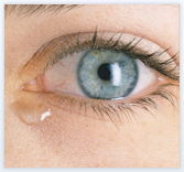 When To Use VISINE® Products? | VISINE®